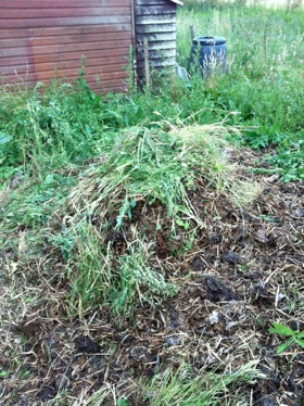 Pile of weeds on top of manure