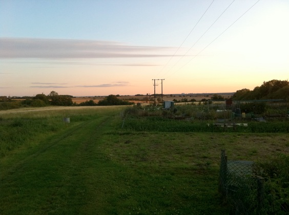 View over the allotments and fields with electricity line running overhead