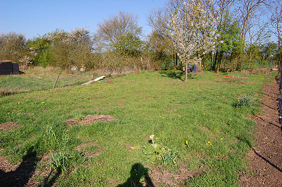 allotment before we started work