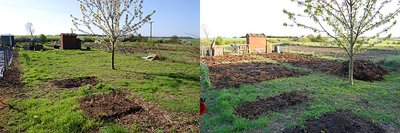 before and after view of the allotment